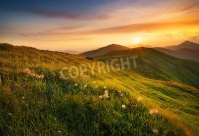 Fototapete Bergfeld während des Sonnenuntergangs. Schöne natürliche Landschaft