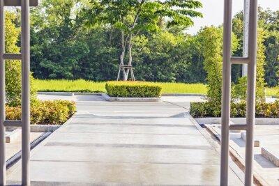 Fototapete Betreten Pfad in einem friedlichen grünen Garten