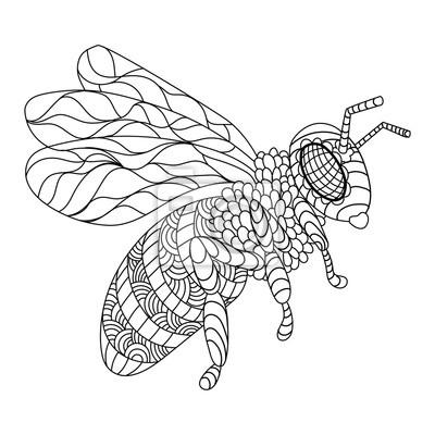 Biene Färbung Buch Vektor-Illustration