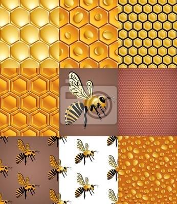 Fototapete Bienen, Waben und Honig Tropfen, Satz von nahtlose Muster, Vektor