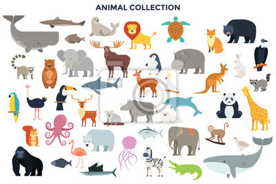 Fototapete Big collection of wild jungle, savannah and forest animals, birds, marine mammals, fish. Set of cute cartoon characters isolated on white background. Colorful vector illustration in flat style.