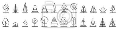 Fototapete Big set of minimal trees linear icons - vector