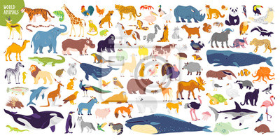 Fototapete Big vector set of different world wild animals, mammals, fish, reptiles and birds. Rare animals. Funny flat characters, good for banners, prints, patterns, infographics, children book illustration etc