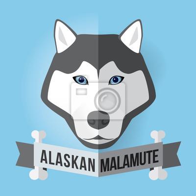 Bild eines Hundes Gesicht. Alaskischer Malamute. Abbildung