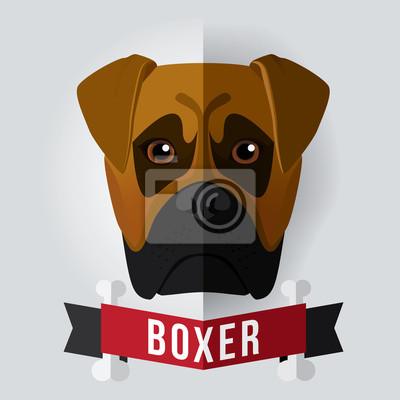 Bild eines Hundes Gesicht. Boxer. Abbildung