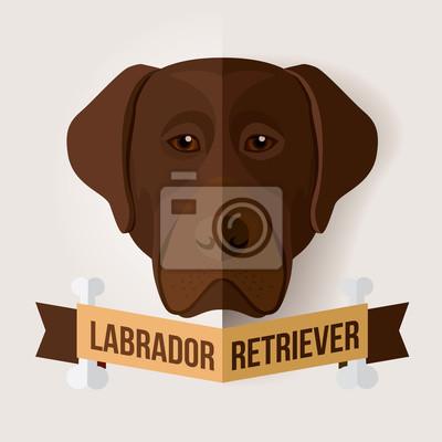 Bild eines Hundes Gesicht. Schokoladen-Labrador retriever. Abbildung