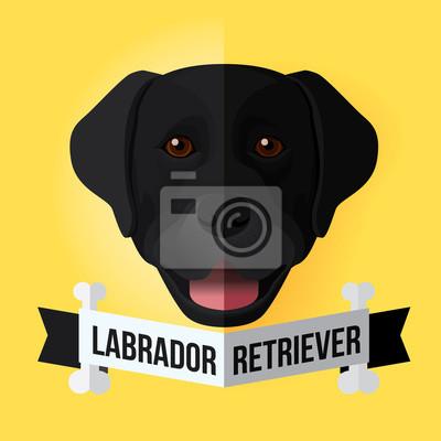 Bild eines Hundes Gesicht. Schwarzer Labrador retriever. Abbildung