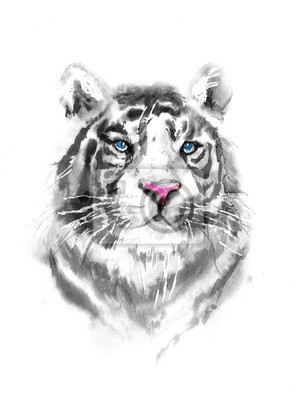 Black and White Tiger portrait watercolor isolated. illustration of tiger with blue eyes and pink nose. Print for t-shirt or poster.