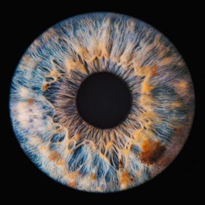 Fototapete blue eye iris
