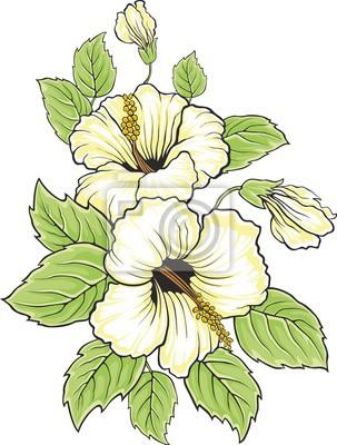 Blühende schöne hibiskusblüte. hawaii-zeichen. karte oder ...