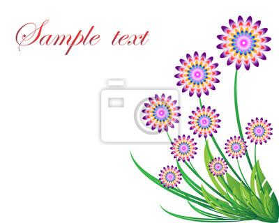 Blume auf weißem Hintergrund