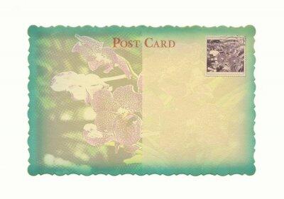 Blume Postkarte