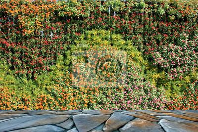 Blume Und Pflanze Wand Vertikal Garten Fototapete Fototapeten