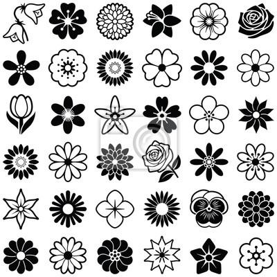 Fototapete Blumen-Symbol-Sammlung - Vektor-Illustration
