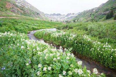 Fototapete Blumen und Berg