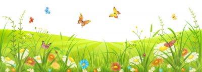 Fototapete Blumensommer oder Frühlingswiese mit grünem Gras, Blumen und Schmetterlingen