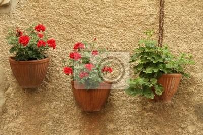 Blumentöpfe an der wand des hauses in italien fototapete ...