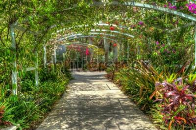 Fototapete Bogen bedeckt mit hellen bunten Blumen am botanischen Garten in Neapel FL