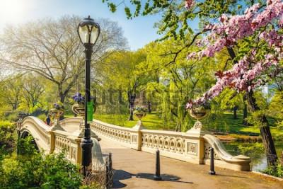 Fototapete Bogenbrücke im Central Park am sonnigen Tag des Frühlinges, New York City