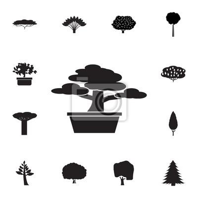Bonsai-baum-symbol. satz schattenbild von baumikonen. web icons ...