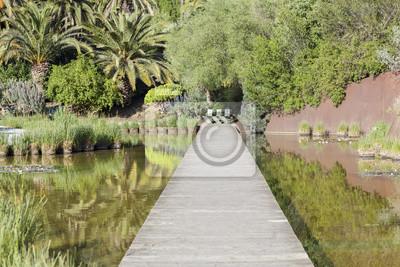 Botanischer Garten In Montjuic Park Barcelona Fototapete