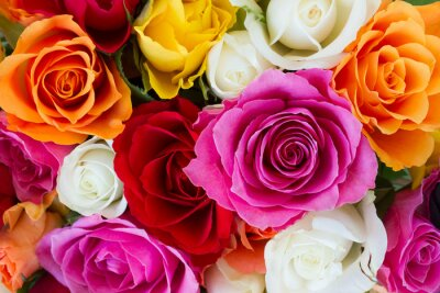 Fototapete bouquet of fresh roses