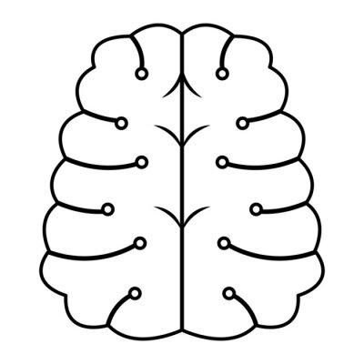 brain human mind idea cartoon