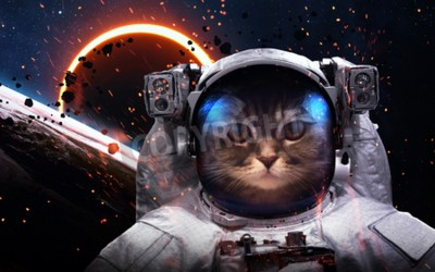 Fototapete Brave cat astronaut at the spacewalk. This image elements furnished by NASA