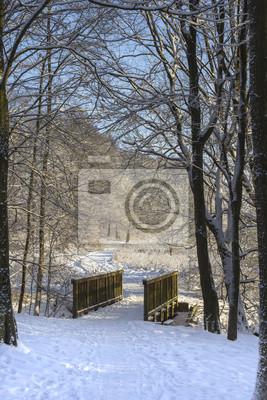 Brindge in verschneiten Wald