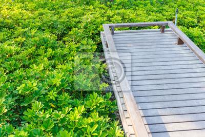 Brücke Im Garten Fototapete Fototapeten Latte Veranda Ecke