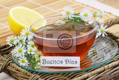 Buenos Dias Was Bedeutet Guten Morgen In Spanisch Mit
