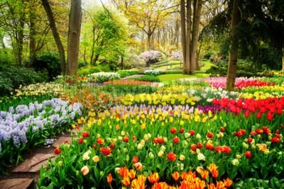 Fototapete Bunte Tulpen Blumenbeete und Weg in einem formalen Garten des Frühlinges, Retro- getont