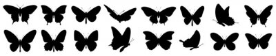 Fototapete Butterflies silhouette set. Vector illustration