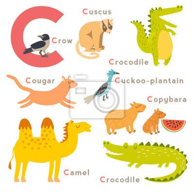 C Buchstabe Tiere gesetzt. Englisches Alphabet. Vektor-Illustration, isoliert auf weißem Hintergrund