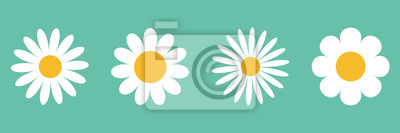 Fototapete Camomile icon set. White daisy chamomile. Cute round flower plant collection. Growing concept. Love card symbol. Flat design. Green background. Isolated.