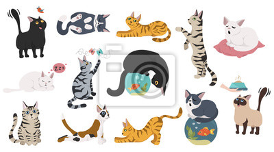 Fototapete Cartoon cat characters collection. Different cat`s poses, yoga and emotions set. Flat color simple style design.