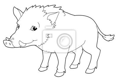 Cartoon Tier Wildschwein Isoliert Malvorlage Illustration