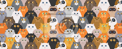 Fototapete Cat poster. Cartoon cat characters seamless pattern. Different cat`s poses and emotions set. Flat color simple style design