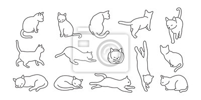 Fototapete cat vector kitten icon logo cartoon character illustration doodle white