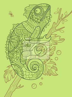 Fototapete Chameleon Ausmalbilder Für Erwachsene Vektor