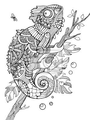Chameleon Malbuch für Erwachsene Vektor