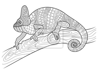 Fototapete Chameleon Tierischen Malbuch Für Erwachsene Vektor