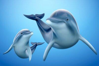 Fototapete Charming dolphin family