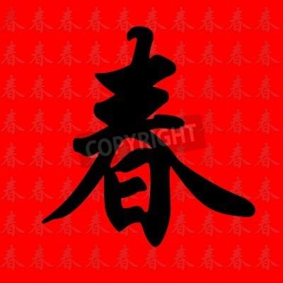 Chinesische Kalligraphie Zeichen Mit Der Bedeutung Feder In