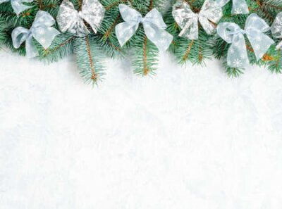 Fototapete Christmas Border tree branches with golden decor isolated on white, horizontal banner