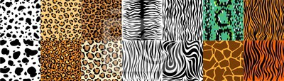 Fototapete Collection of natural seamless patterns with coat, skin of fur textures of wild exotic animals - zebra, snake, tiger, leopard, giraffe. Flat vector illustration for wrapping paper, textile print.