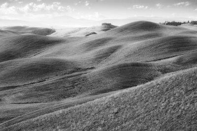 Fototapete Colli toscani