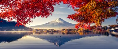 Fototapete Colorful Autumn Season and Mountain Fuji with morning fog and red leaves at lake Kawaguchiko is one of the best places in Japan