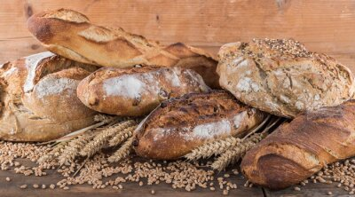 Fototapete Composition of various breads