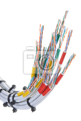 Wondrous Computer Network Cables With Cable Ties On White Background Wiring Digital Resources Spoatbouhousnl